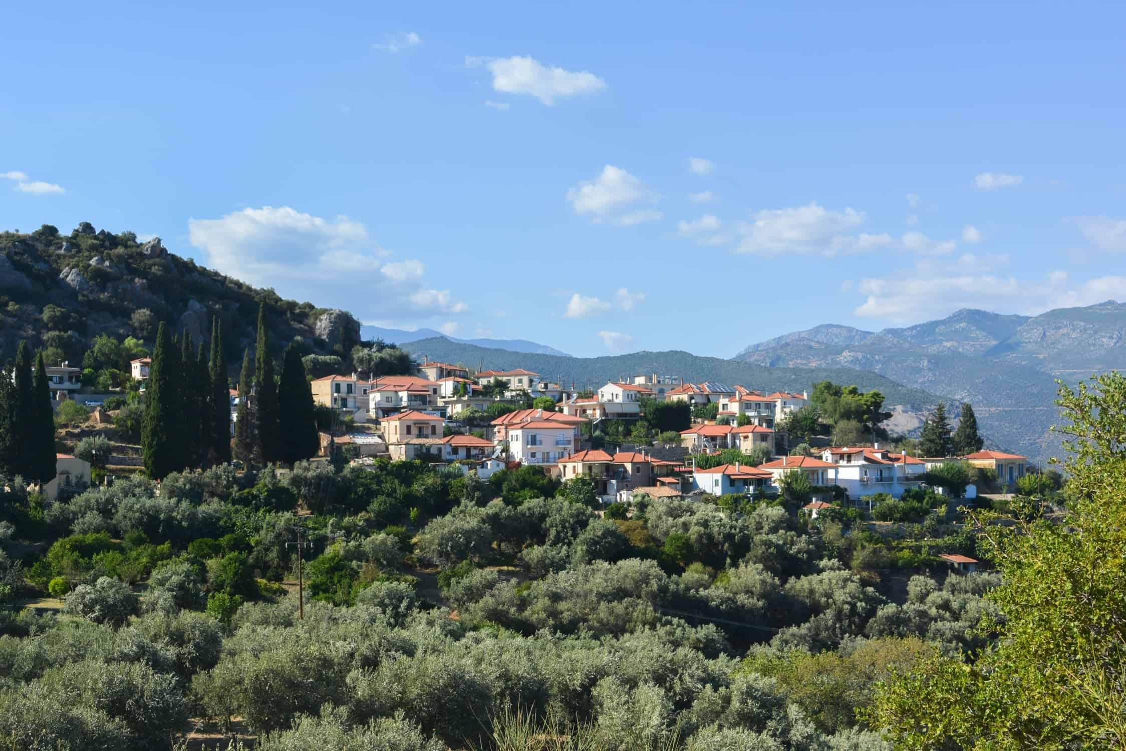 Amfissa - village view surrounded by olive trees and other green plants