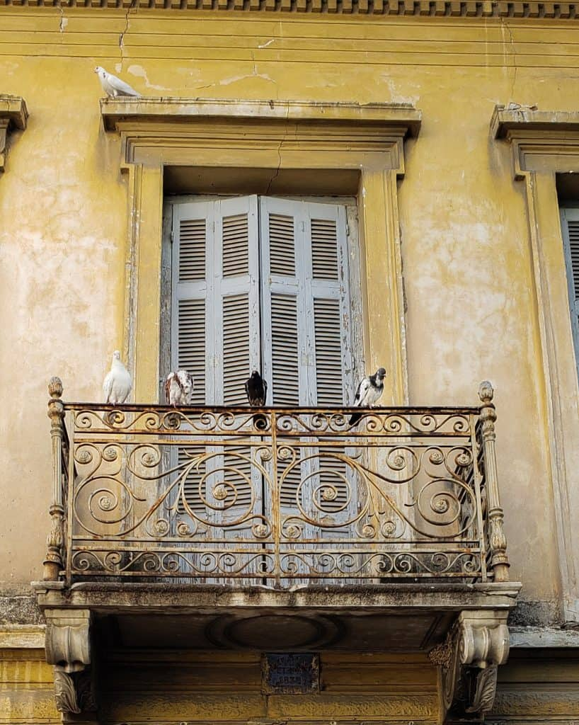 Athens in January - old yellow door and rusted balcony with pigeons on top