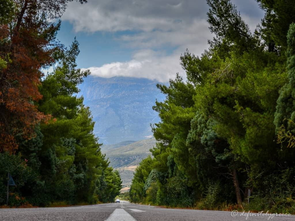 Central Greece Road Nature Trees Mountains