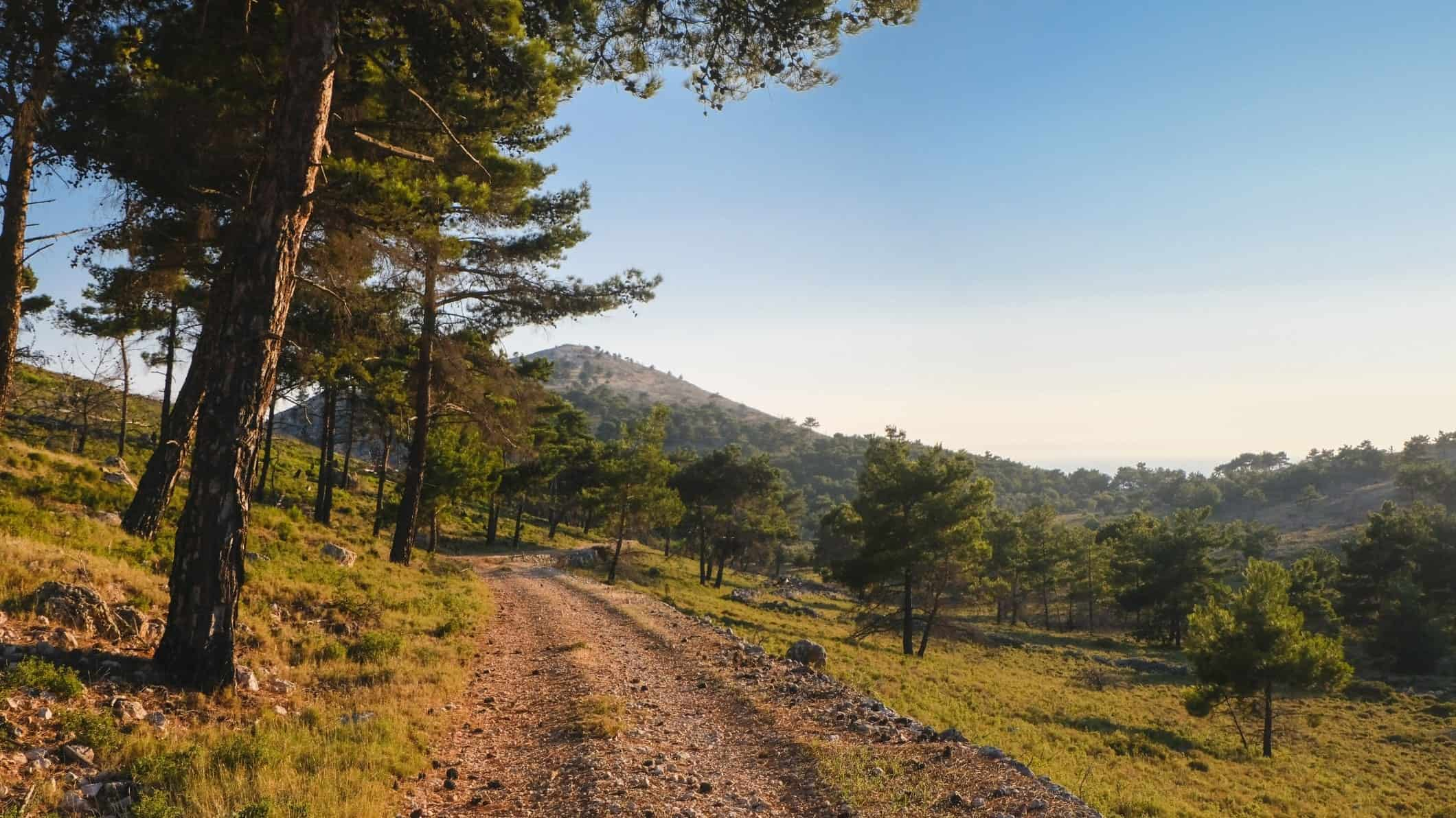 chios mountains trees - April Guide To Greece