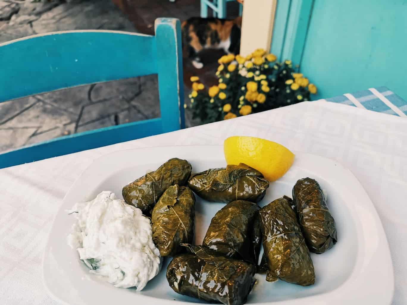 Dolmadakia Traditional Food Definitely Greece