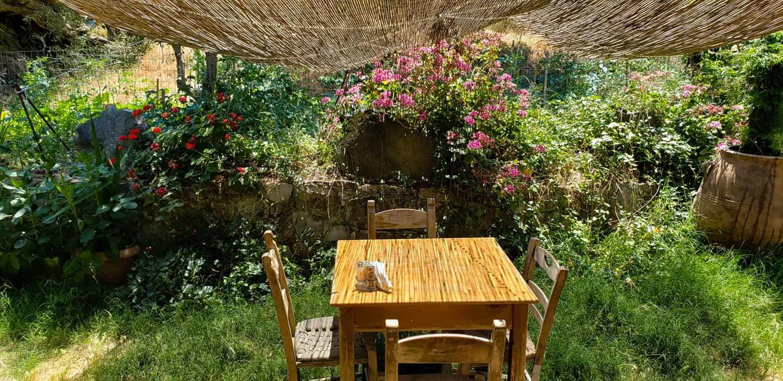 Ntounias Tavern in Crete Island